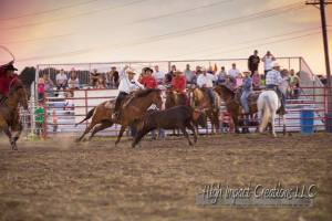 High Impact Team Roping Eddy